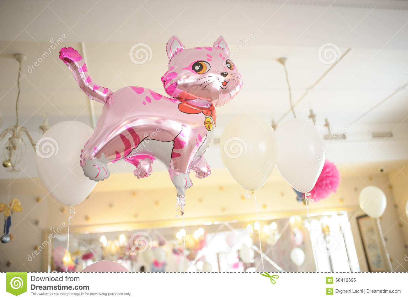 Baby Birthday Decor Or Shower Pink Cat
