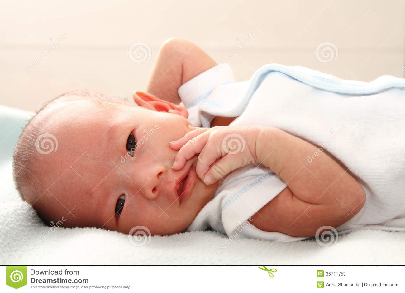 Baby Boy Posing Stock Photos - Image: 36711753 Newborn Boy Photography Poses