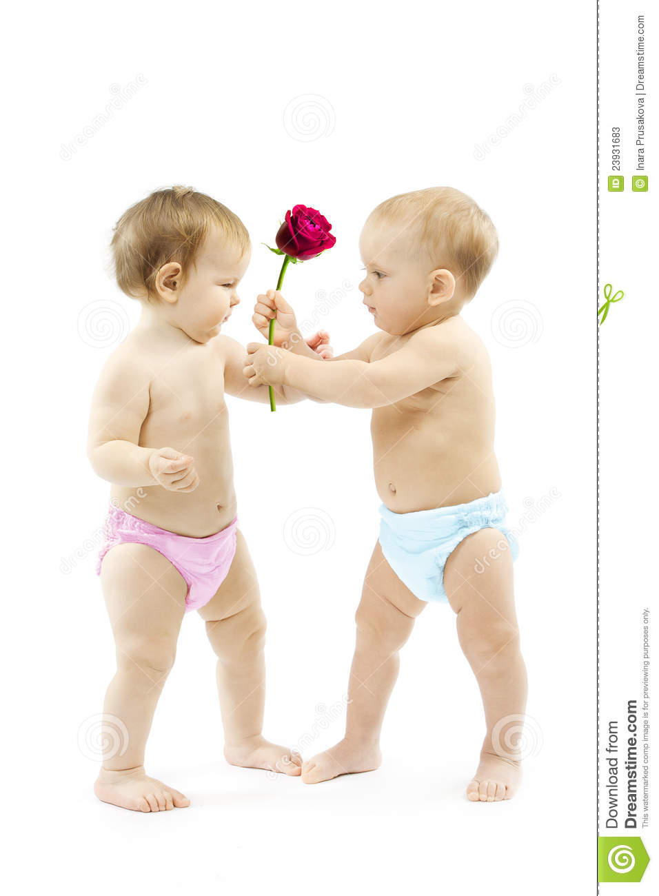 baby boy present rose flower to baby girl. stock image - image of