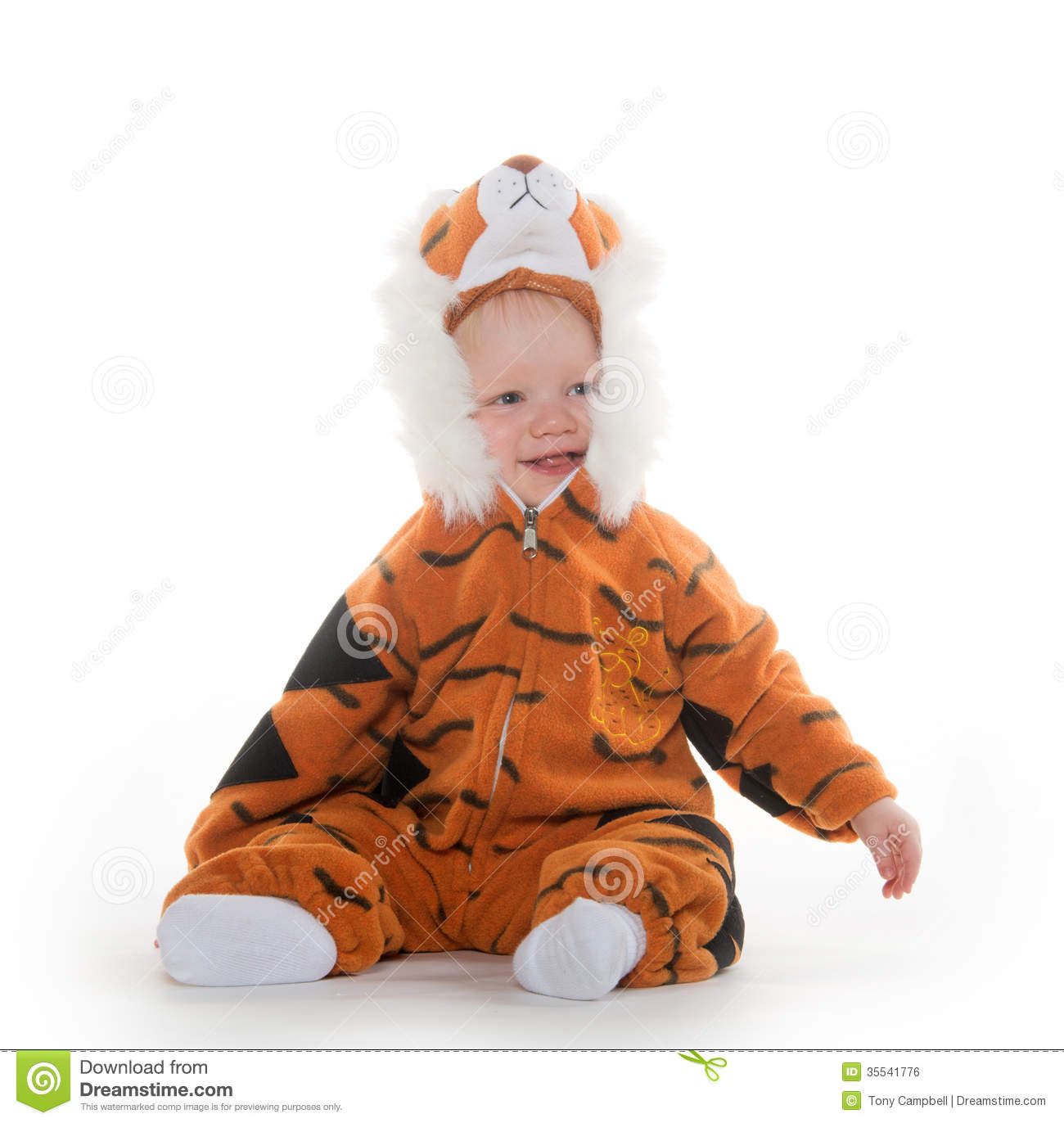 Baby Boy Gifts Halloween : Baby boy in tiger costume stock photo image of background