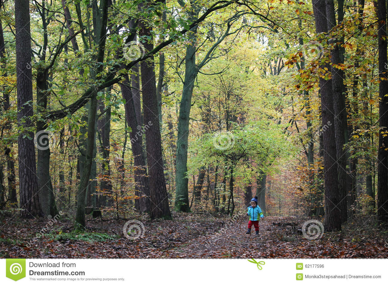 Baby boy walking through the autumn forest