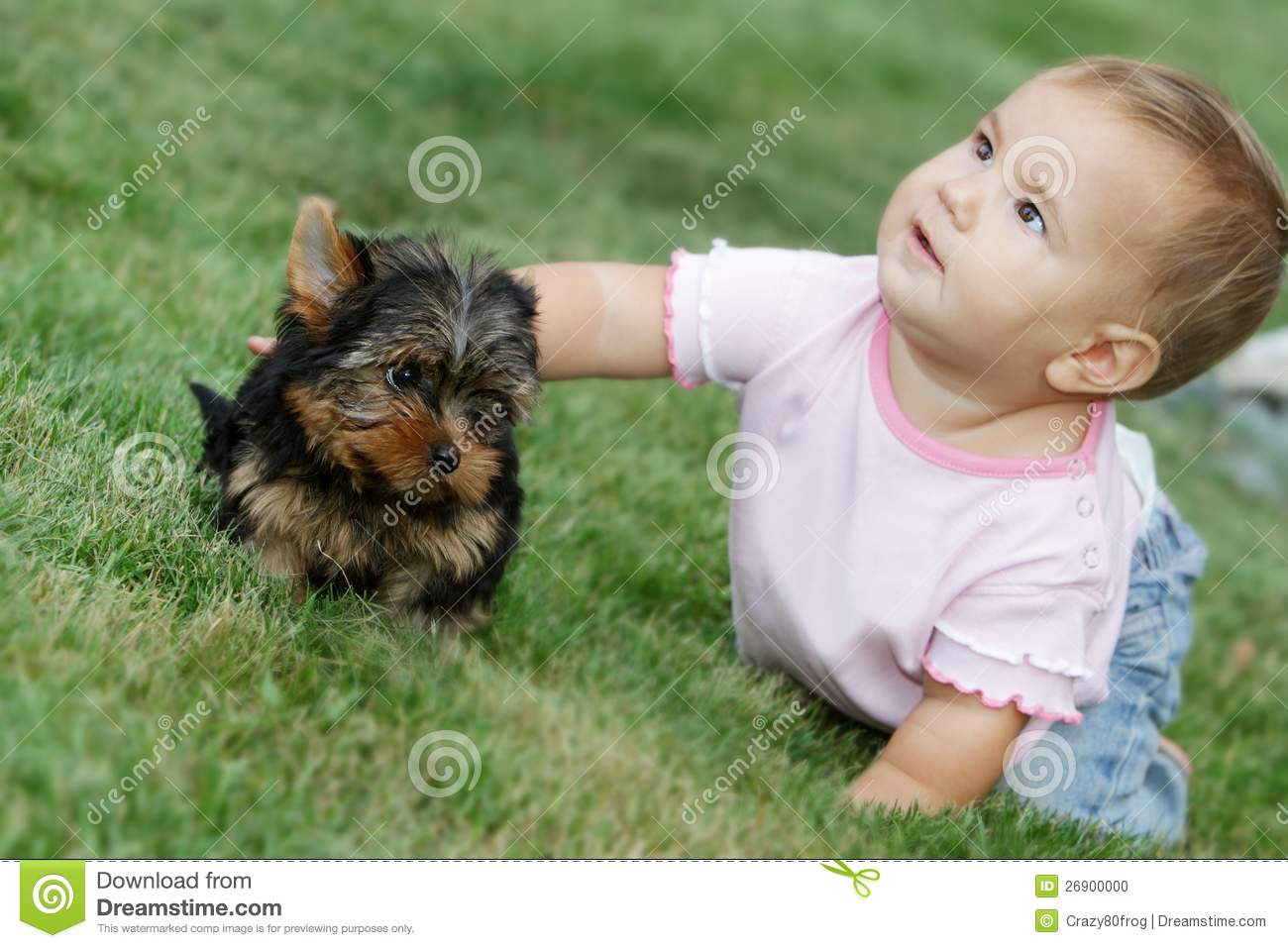 baby child and yorkshire terrier stock photo   image 26900000