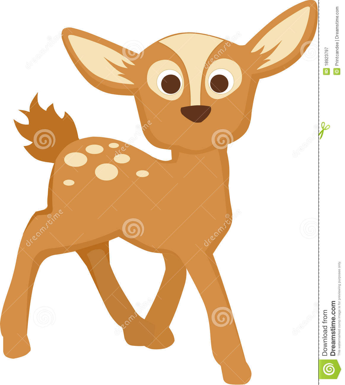 Baby Deer Royalty Free Stock Photography - Image: 18923797