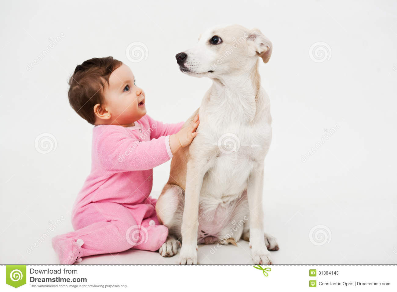 Baby And Dog Pet Stock Photos - Image: 31884143