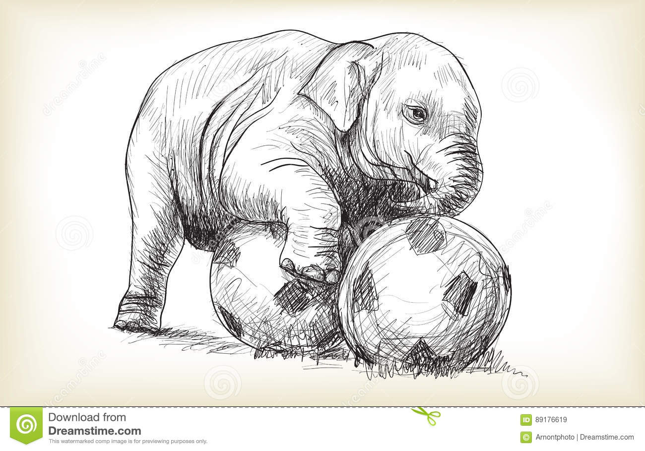 Baby Elephant Playing Football Sketch And Free Hand Draw Stock
