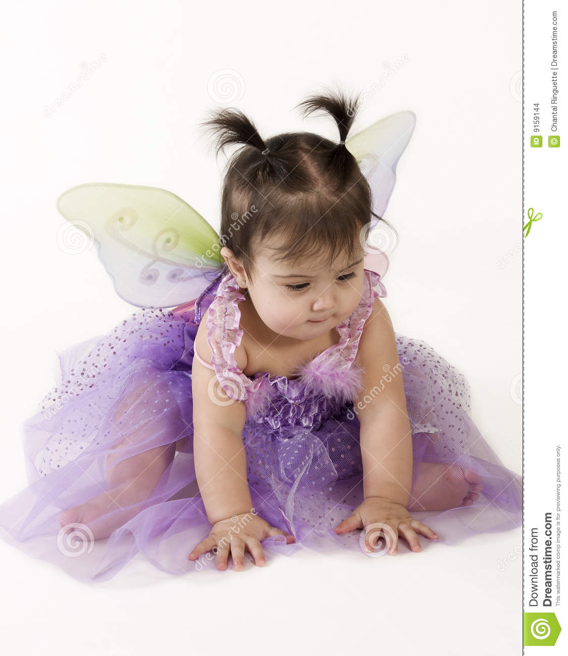 Baby Fairy Stock Photo Image Of Pigtails Dress Princess 9159144