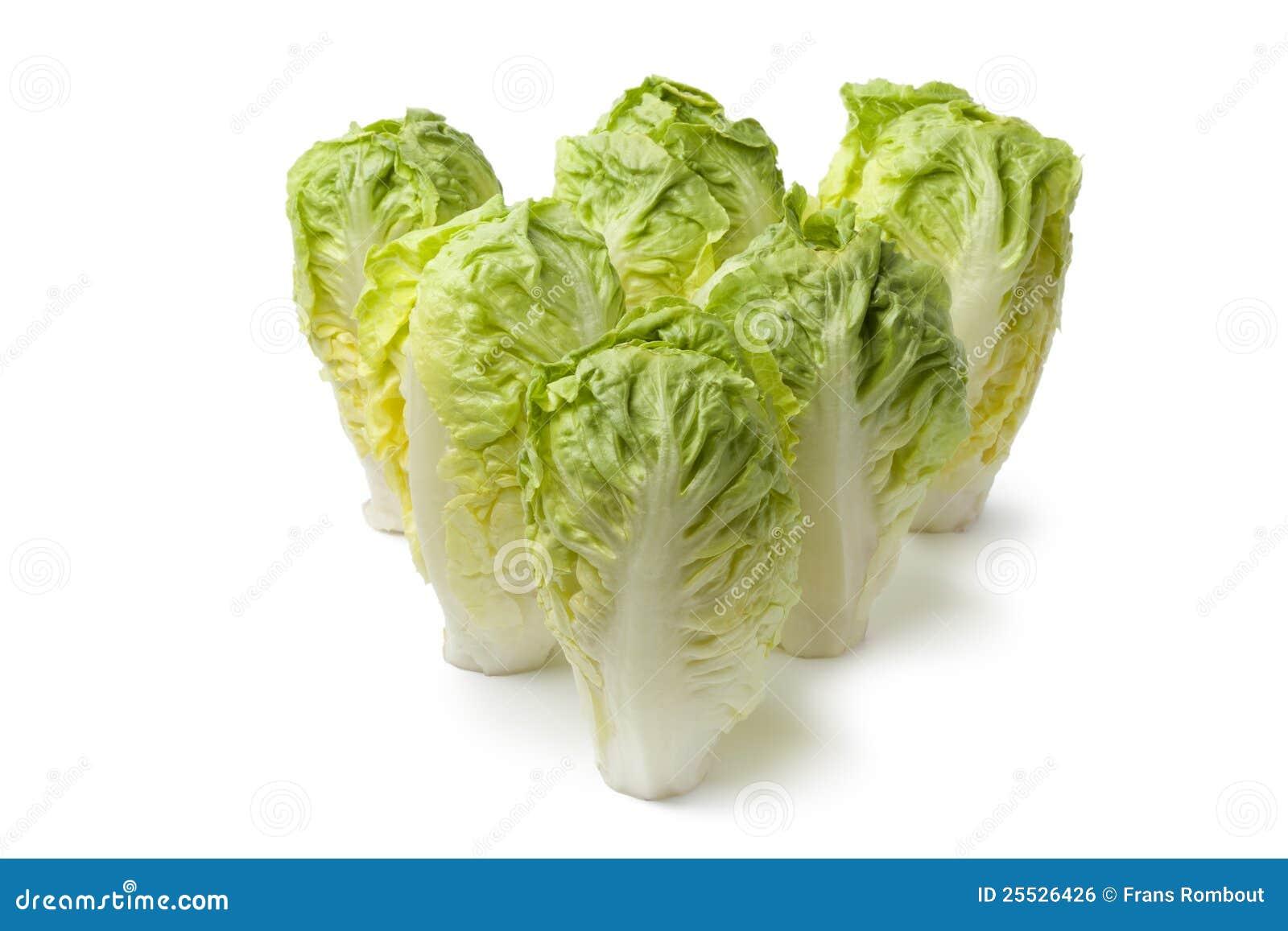 Baby Gem Lettuce Royalty Free Stock Image - Image: 25526426