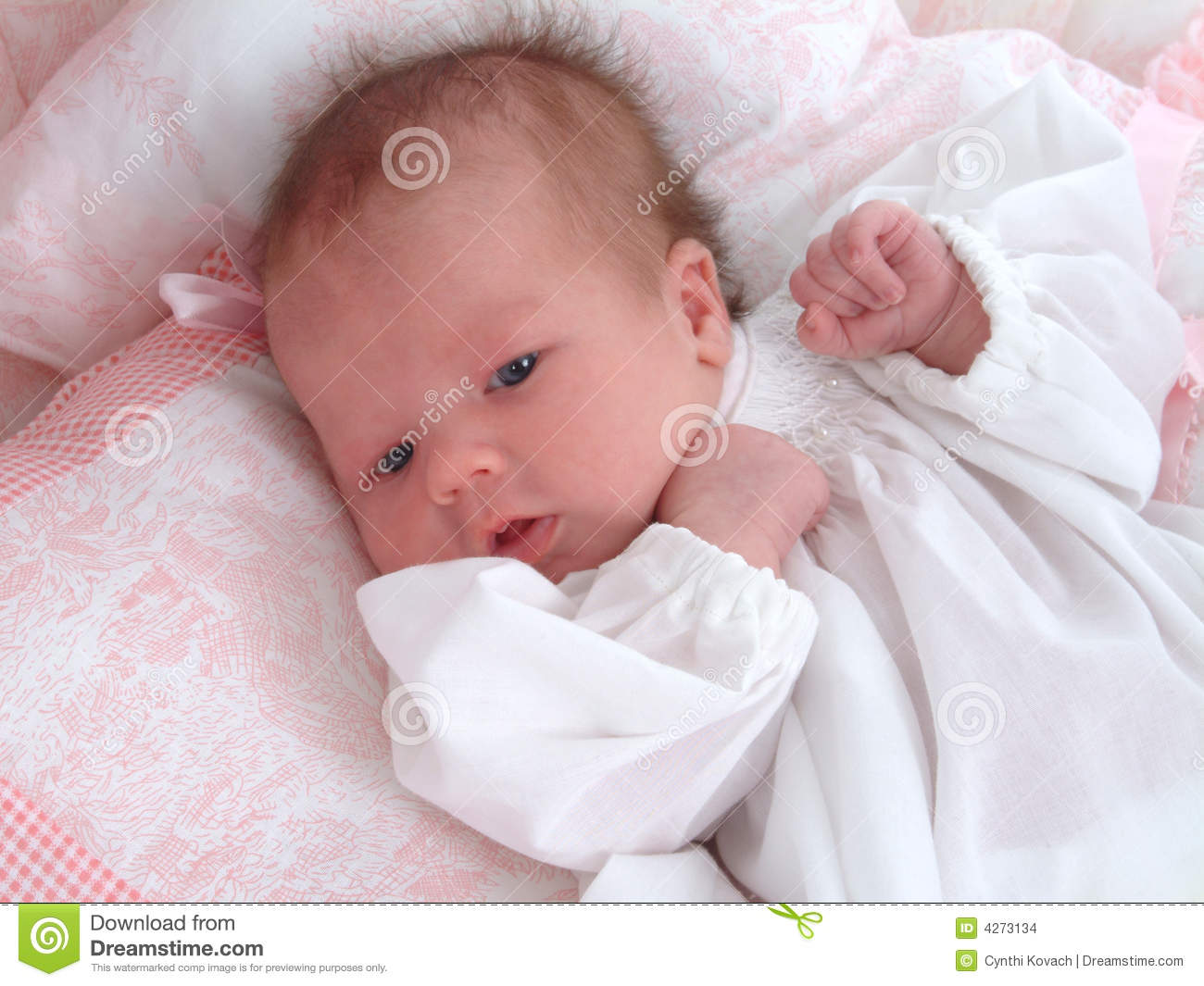 Baby girl stock photo. image of newborn gingham dress 4273134