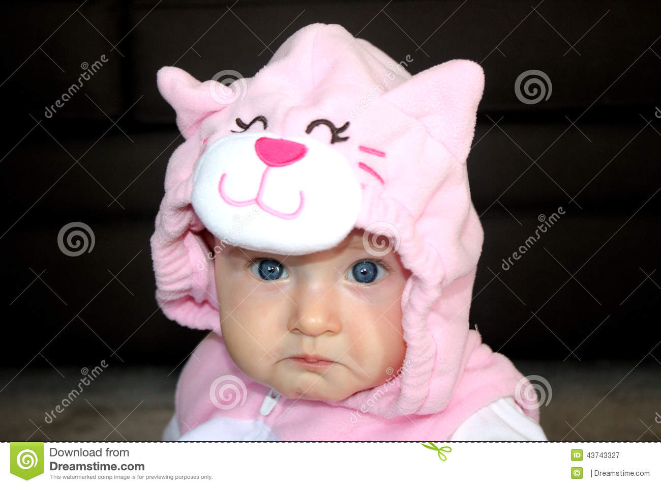 Download Baby girl in cat costume stock image. Image of blue baby - 43743327  sc 1 st  Dreamstime.com & Baby girl in cat costume stock image. Image of blue baby - 43743327