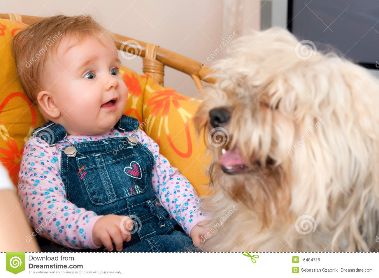 Baby girl with pet dog