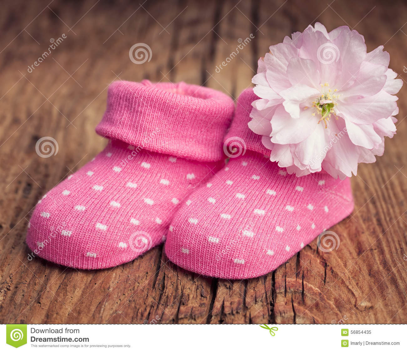 Baby Girl Shoes With Polka Dots And Pink Flower Stock Image Image