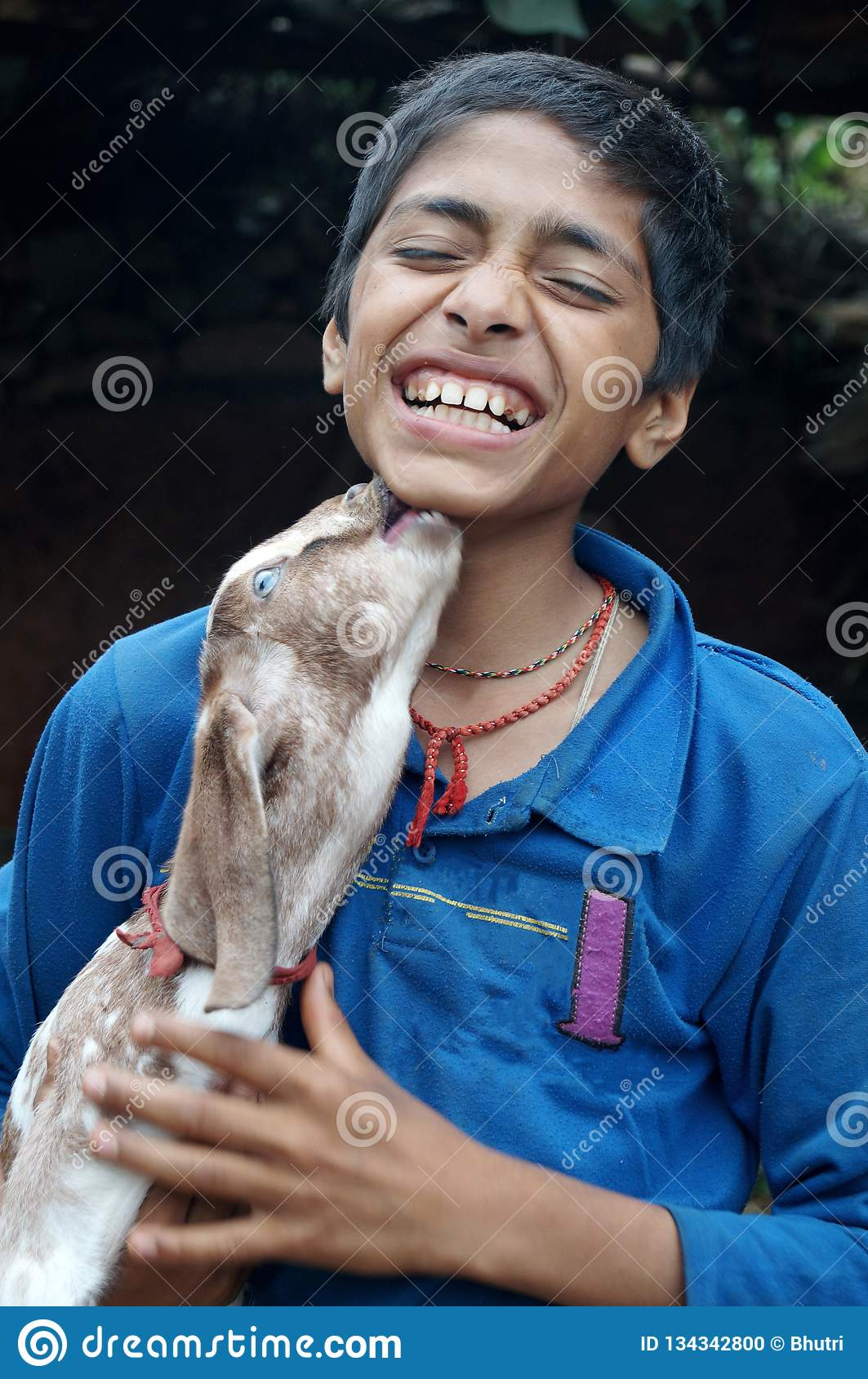 Baby Goat kissing a boy