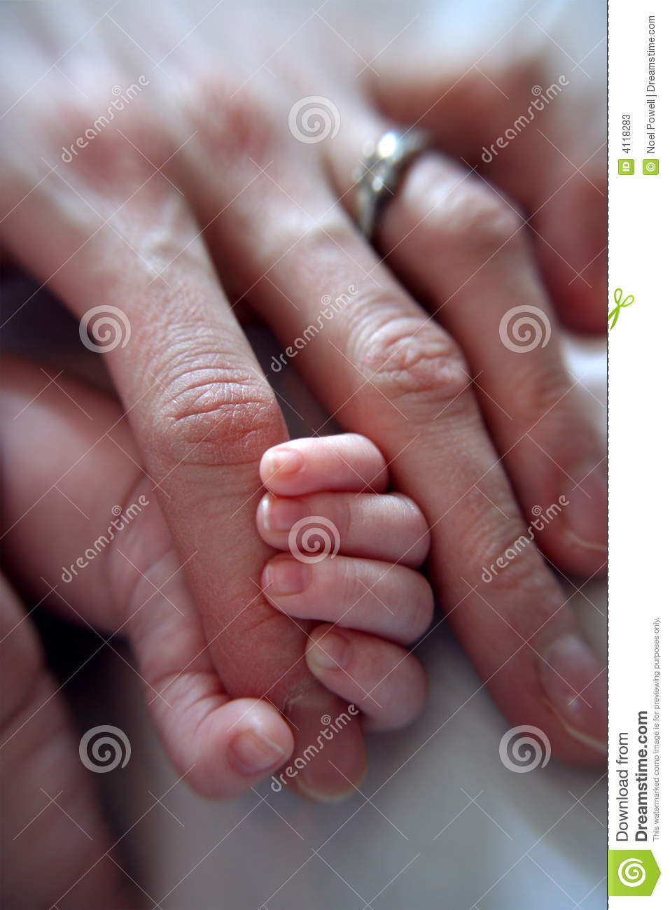 Baby Grasping Finger Stock Photos Image 4118283