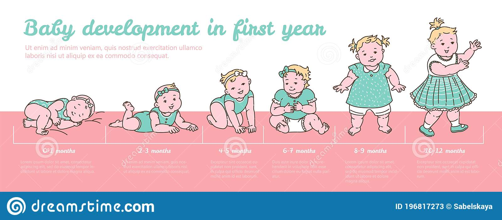 Baby Growth Chart   Cartoon Infographic Banner with Child Growing ...