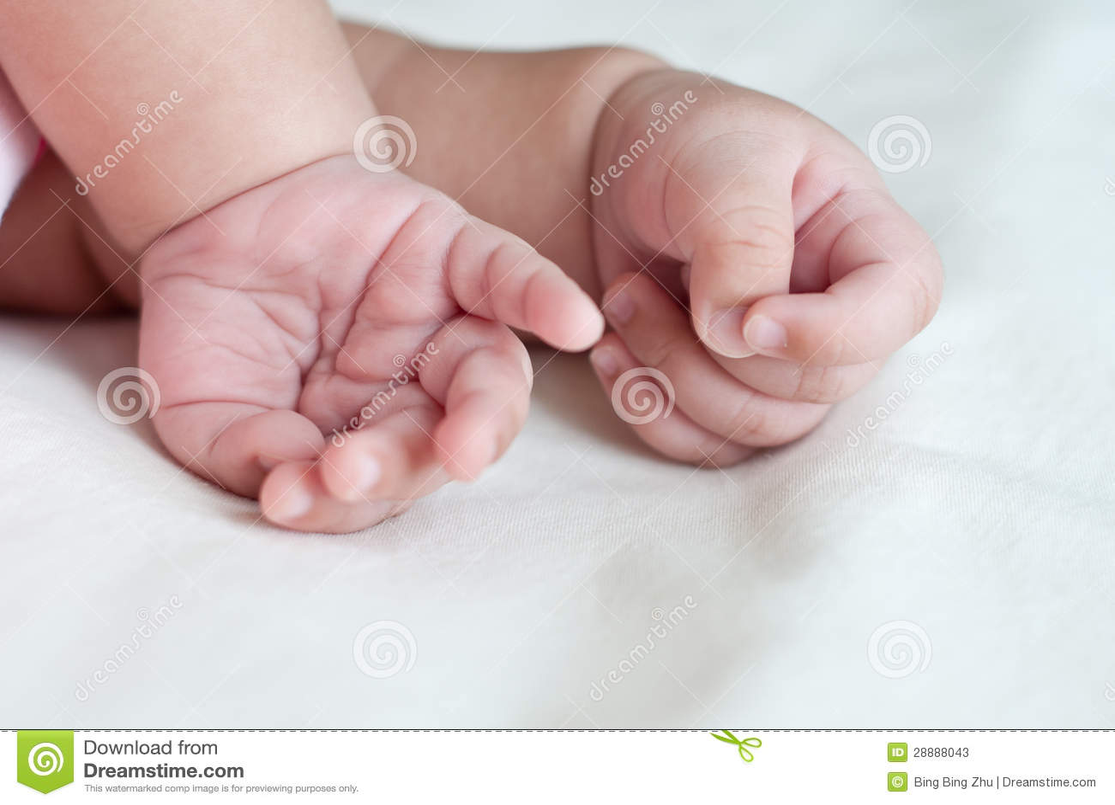 Baby hands stock image. Image of finger, body, hands ...