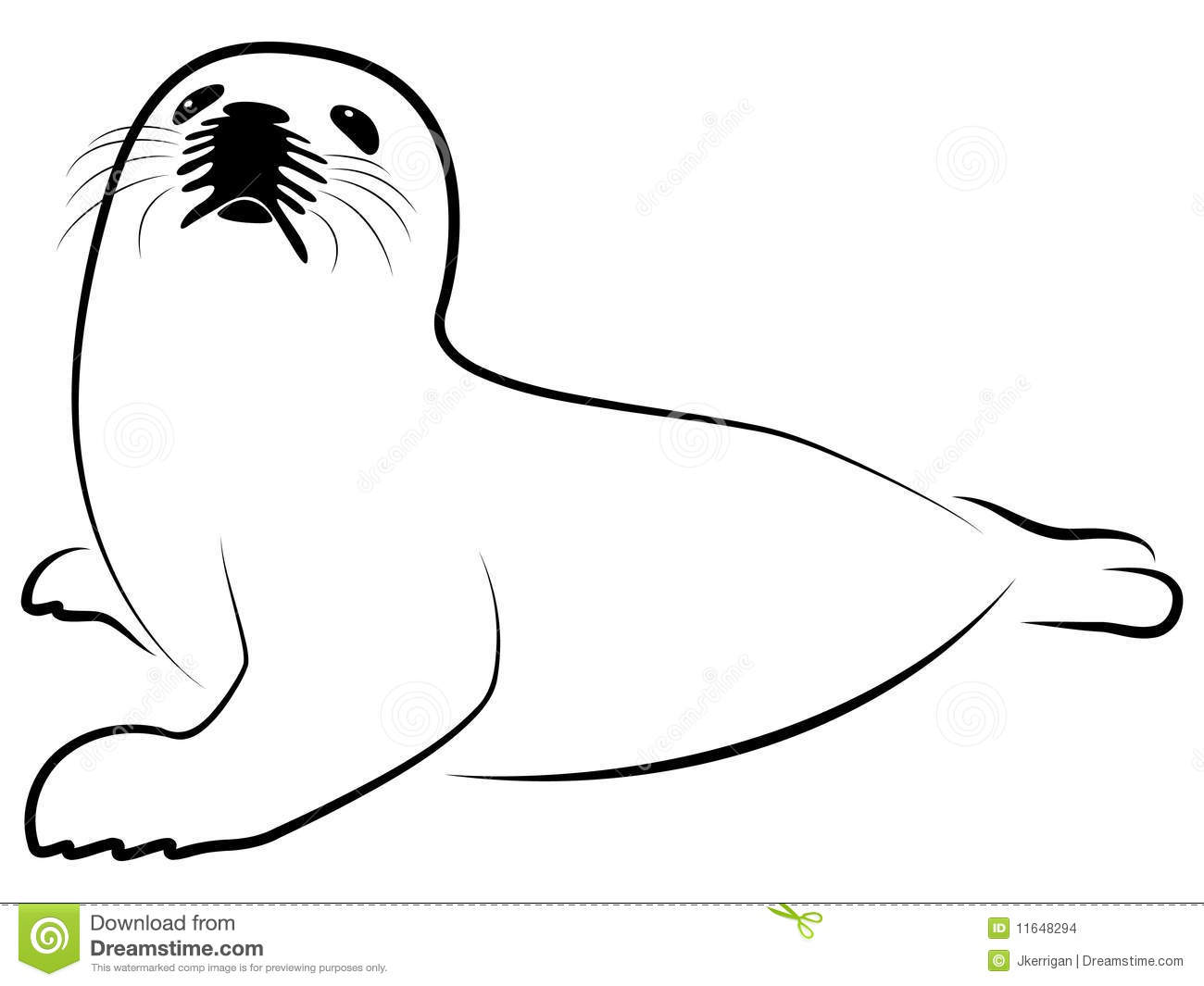 baby harp seal stock images image 11648294