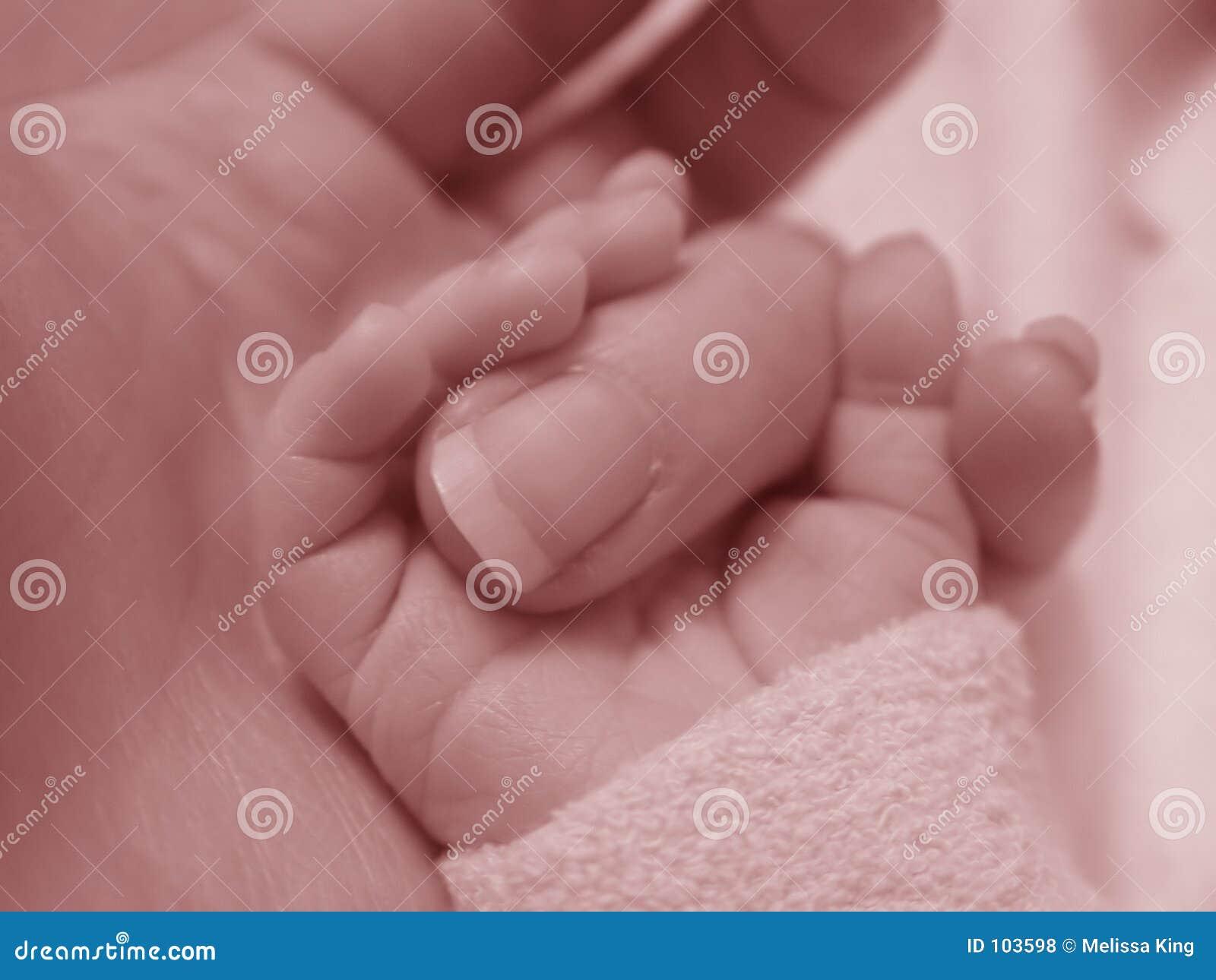Baby Holding Finger Royalty Free Stock Photos Image 103598