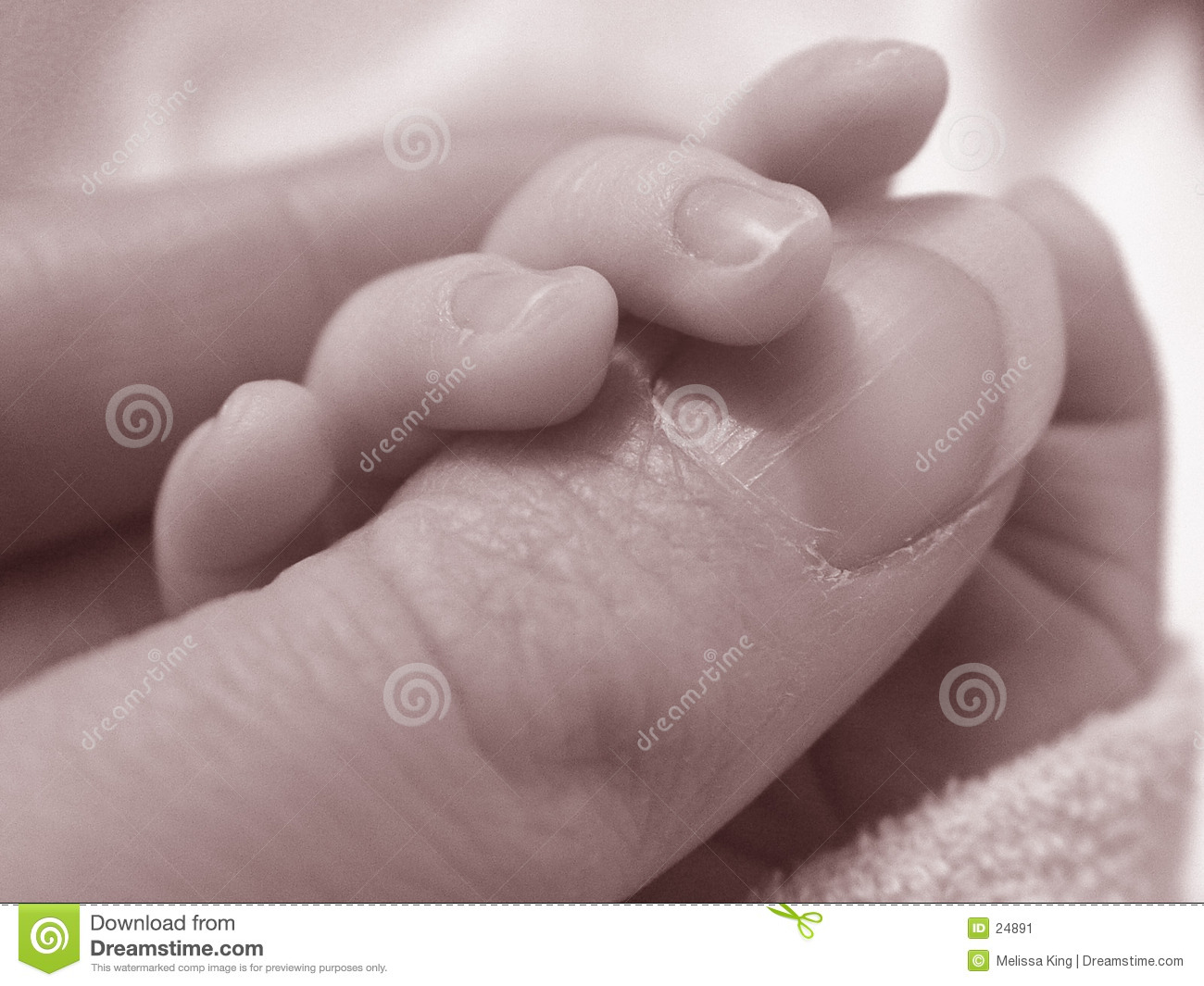 Baby holding ladies thumb