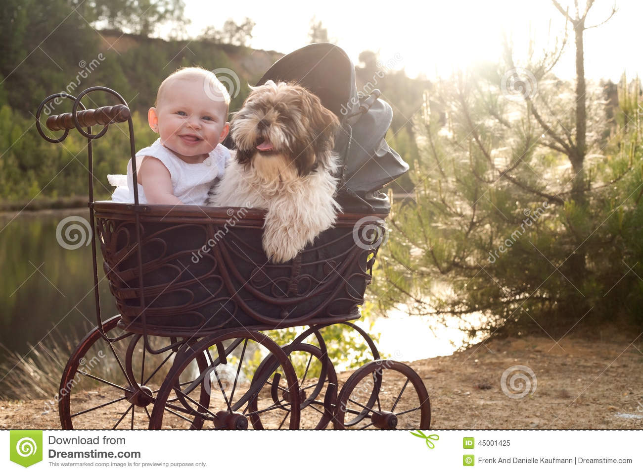 Baby and little puppy in a pram