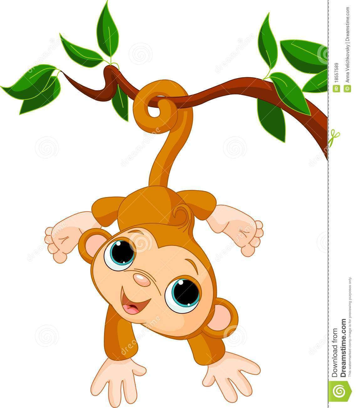Baby Monkey On A Tree Royalty Free Stock Images Image 18557589