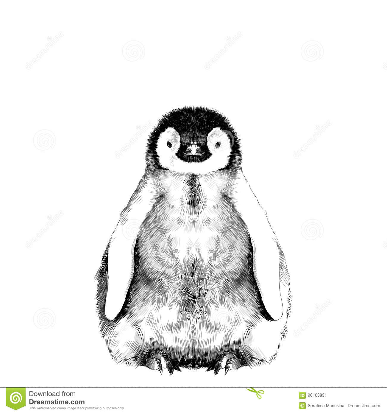 Baby penguin sketch stock vector. Illustration of nature ...