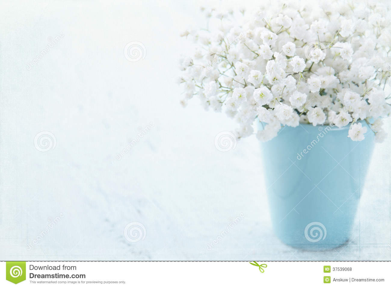 Baby S Breath Flowers In A Vase Stock Photo Image Of Vase Blue 37539068
