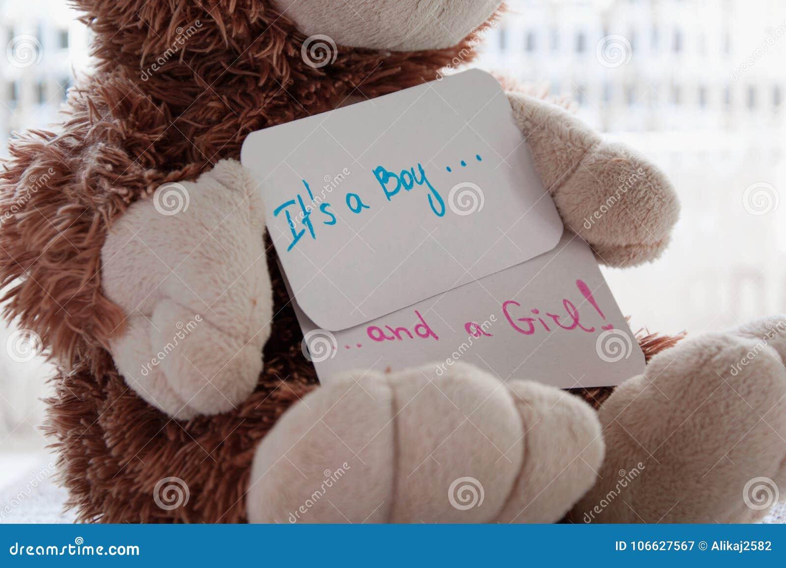 Baby shower` det ` s en pojke och en flicka`, Håll för nallebjörn ett meddelandekort för kopplar samman ankomster