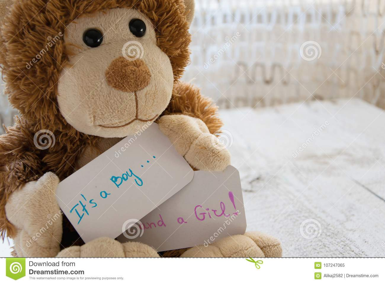 Baby shower `It`s a boy... and a girl`. Teddy bear holds an announcement card for twins arrivals in the family
