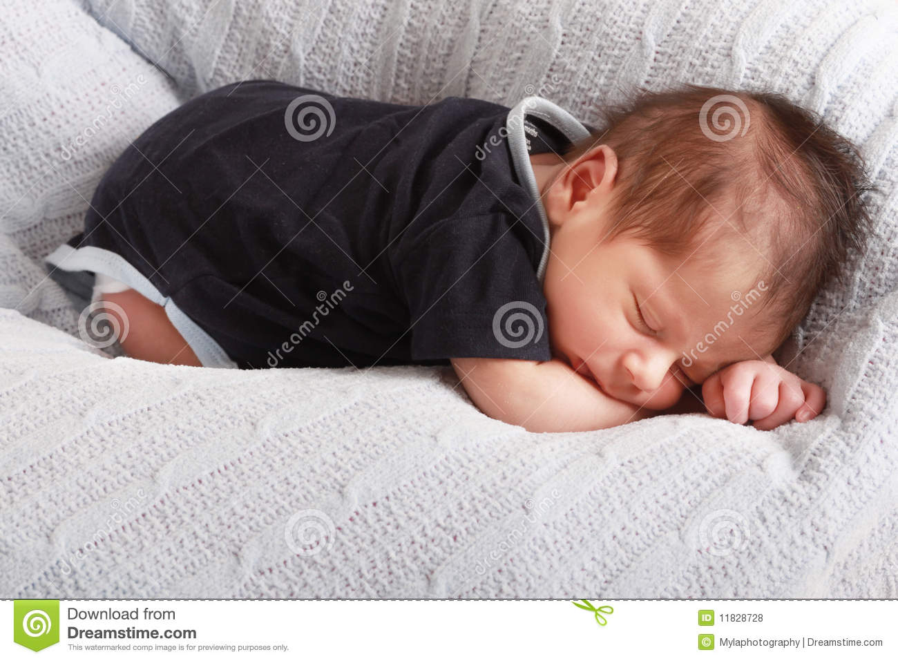 Remarkable Baby Sleeping Stock Photo Image Of Fluffy Dream Asleep Caraccident5 Cool Chair Designs And Ideas Caraccident5Info