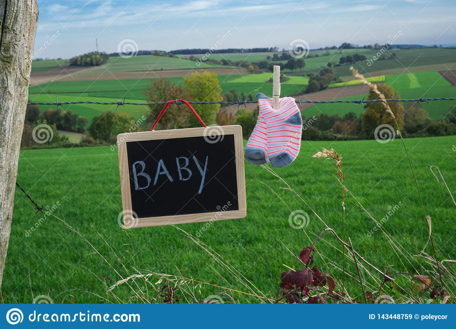 Baby socks and chalkboard on barbed wire against green landscape