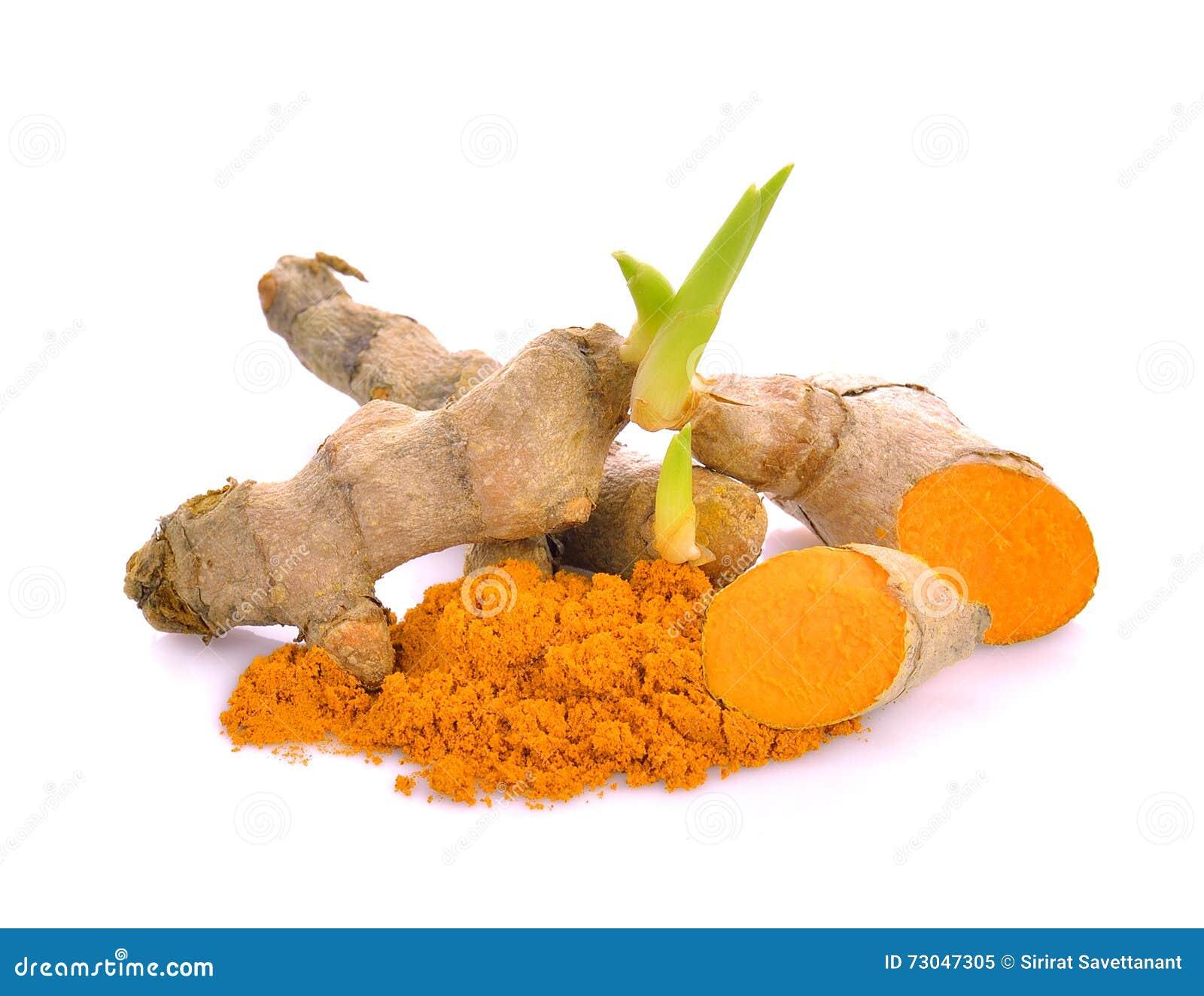 Baby Turmeric Plant Powder Turmeric Stock Image Image