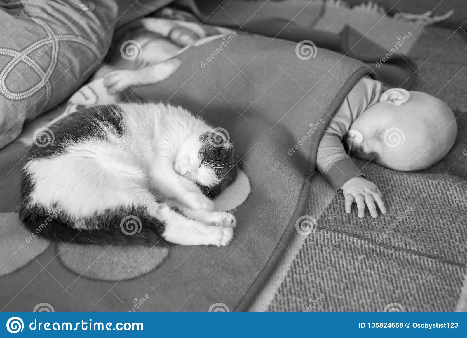Baby- und Katzenschlaf zusammen im Bett, Schwarzweiss-Foto