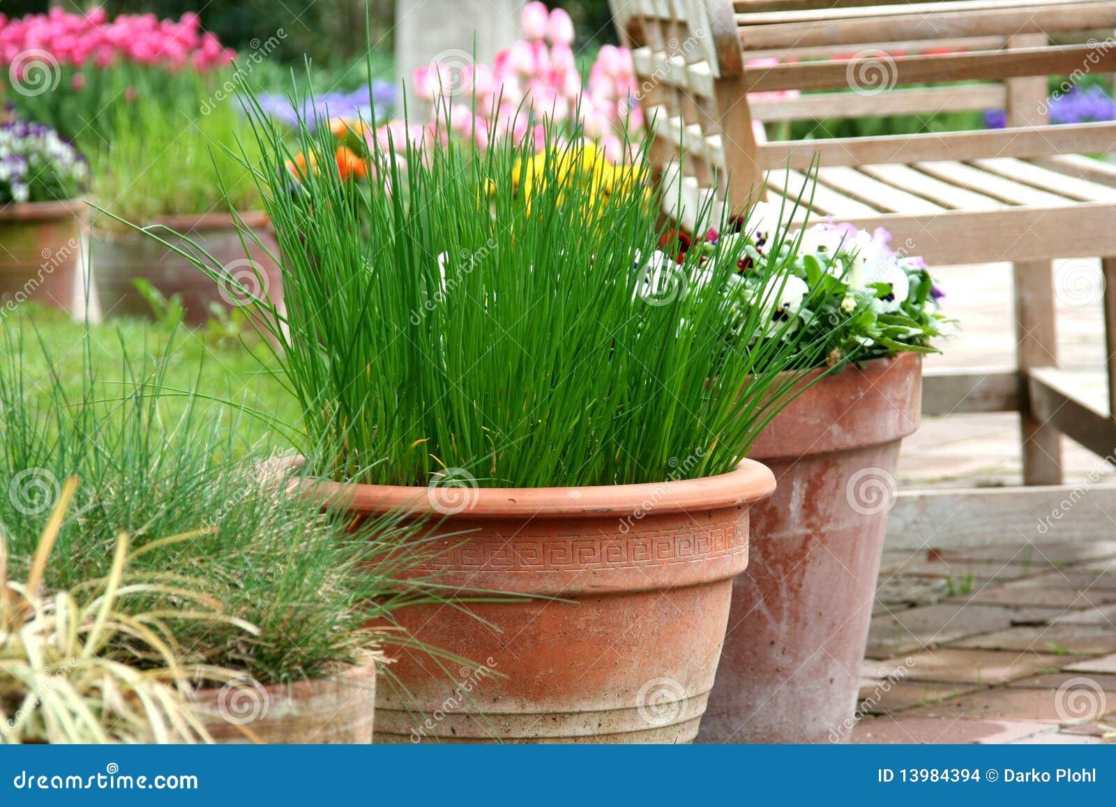 bac faisant du jardinage sur la terrasse herbe et fleur images stock image 13984394. Black Bedroom Furniture Sets. Home Design Ideas