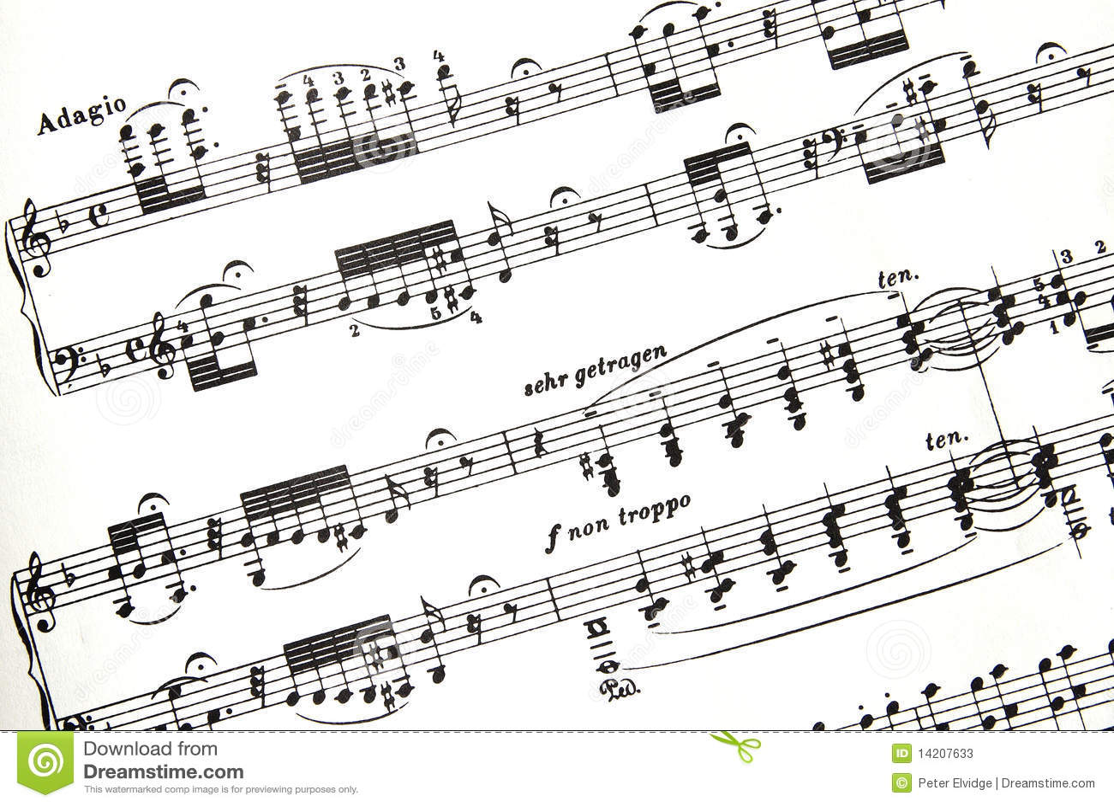 Bach片段评分