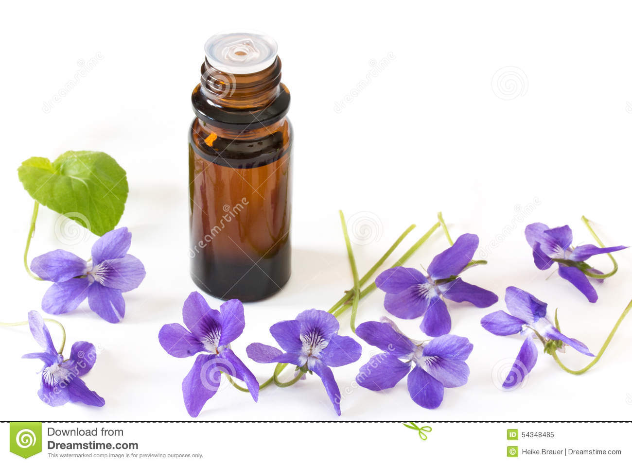 Bach Flower Remedies Of Violets On White Background Stock Image