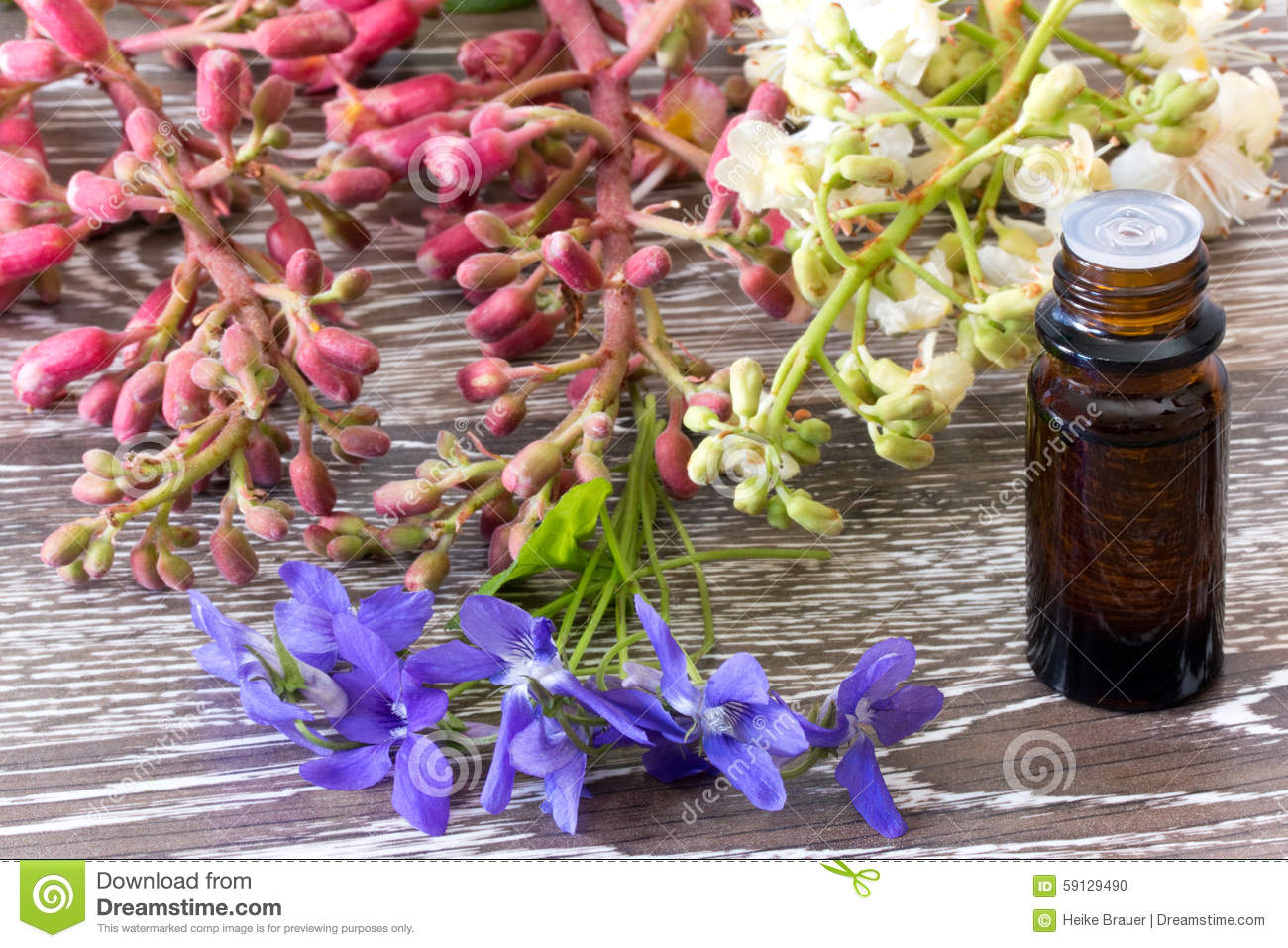 Bach flowers red and white chestnut and violet stock photo image bach flowers red and white chestnut and violet mightylinksfo