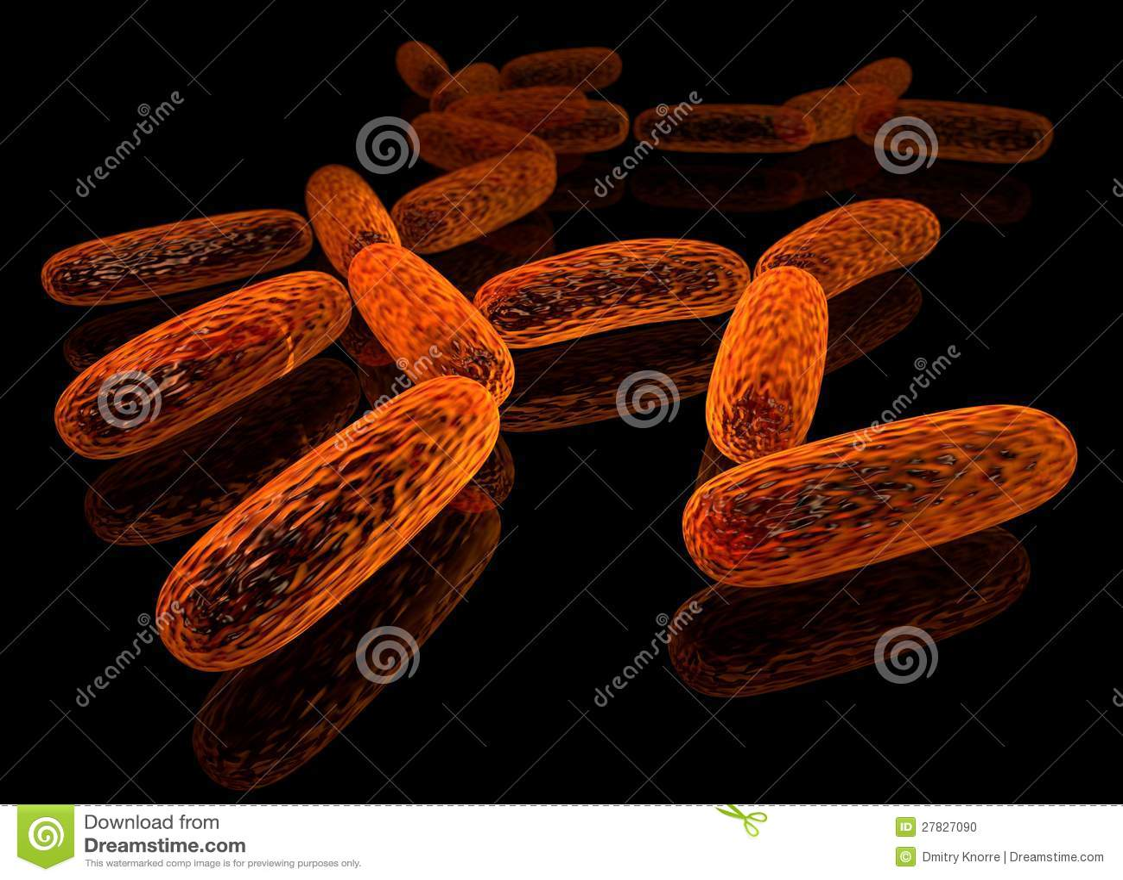 bacillus stock illustration illustration of illness 27827090