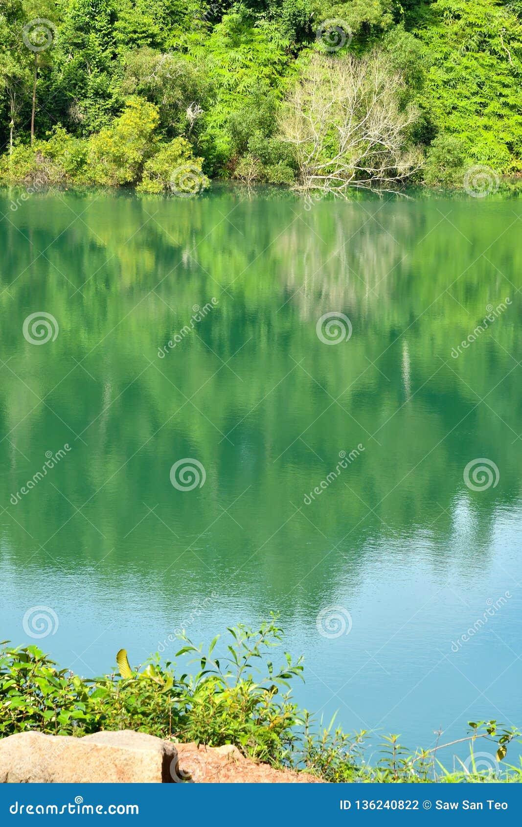 Bacino idrico del cratere della natura