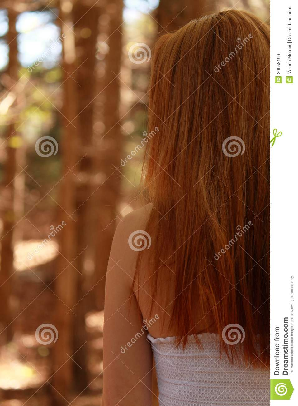 Half A Head Of Red Hair Stock Photo Image Of