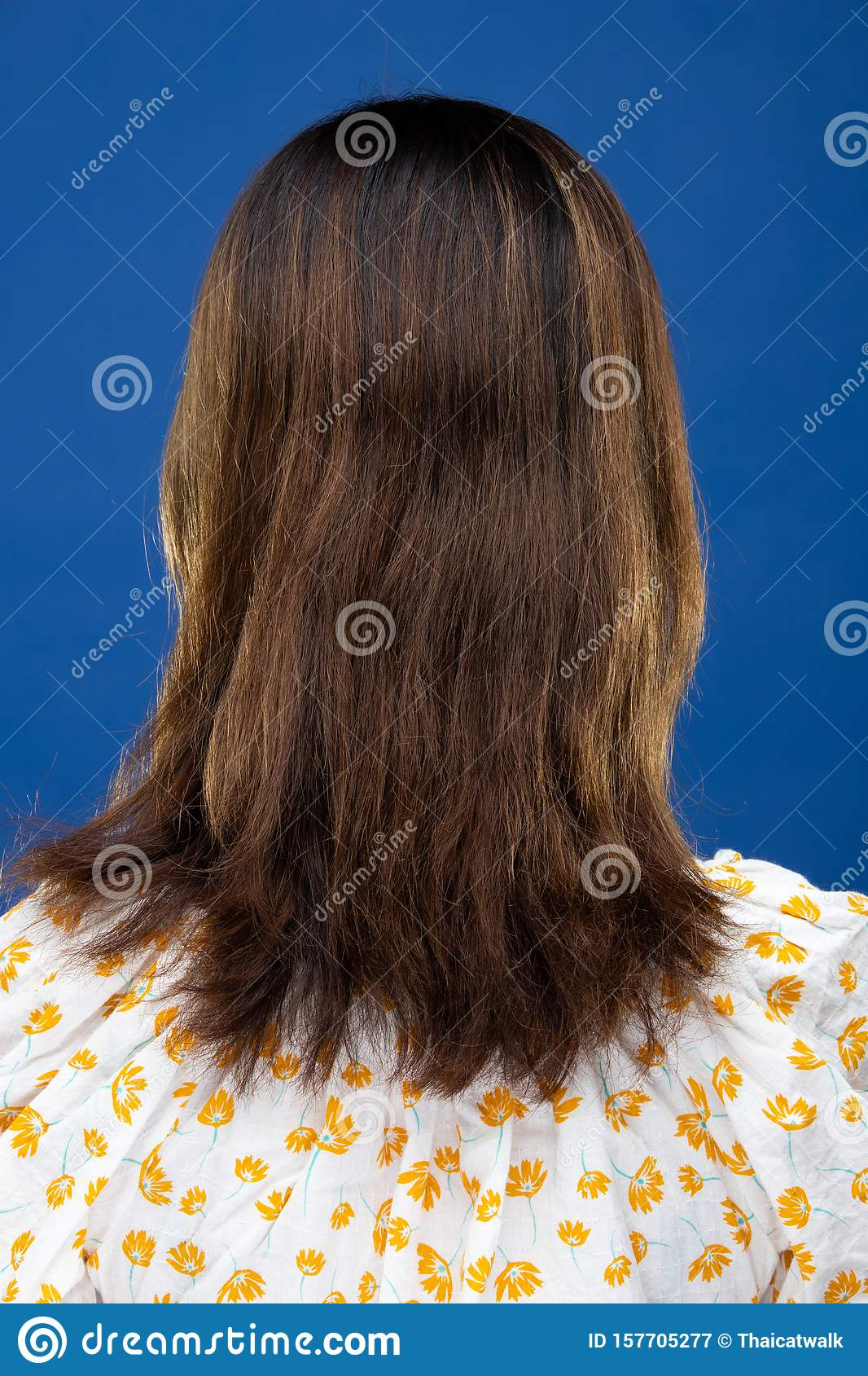 Back Side View Of Women To Show Hair Style Stock Image Image Of Asian Korea 157705277