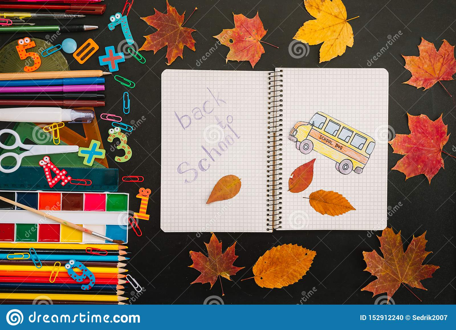 Back to school concept. School and office supplies on blackboard background