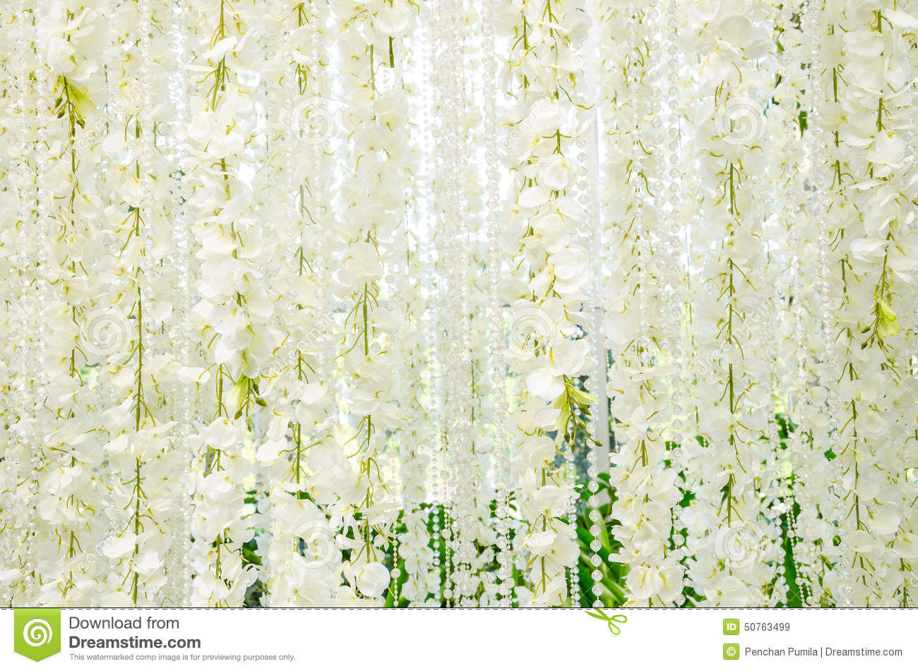 Backdrop for wedding white flowers stock image image of marriage backdrop for wedding white flowers mightylinksfo