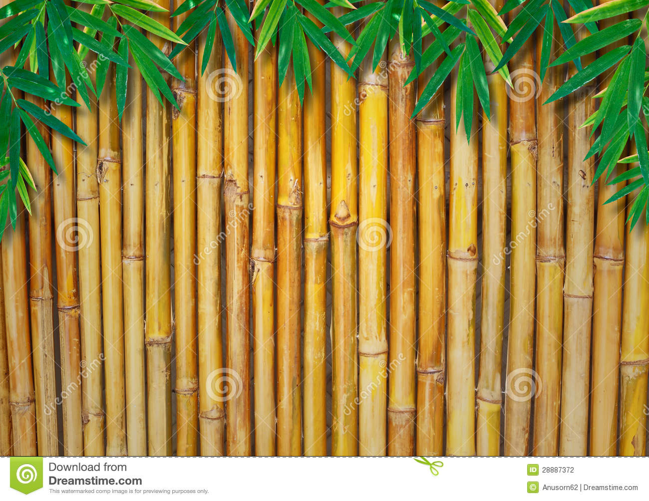 Background Of A Bamboo Fence With Bamboo Leaves Stock