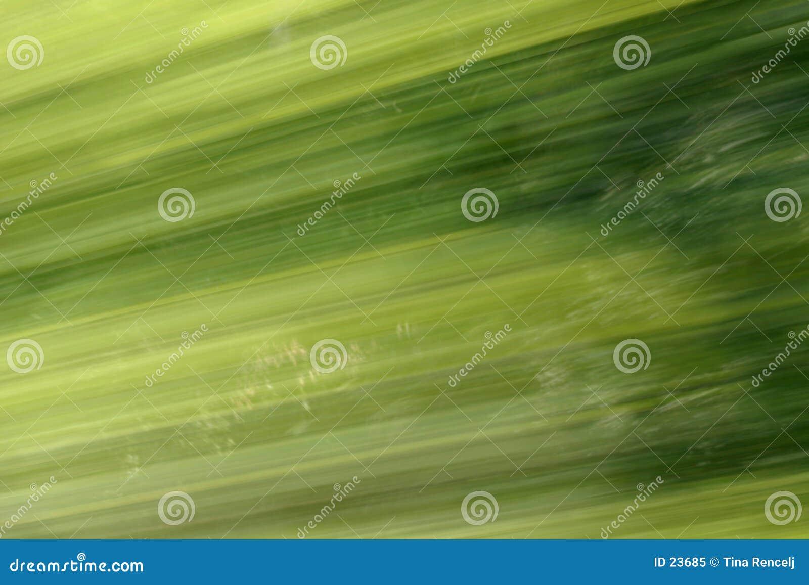 Background Blur Green