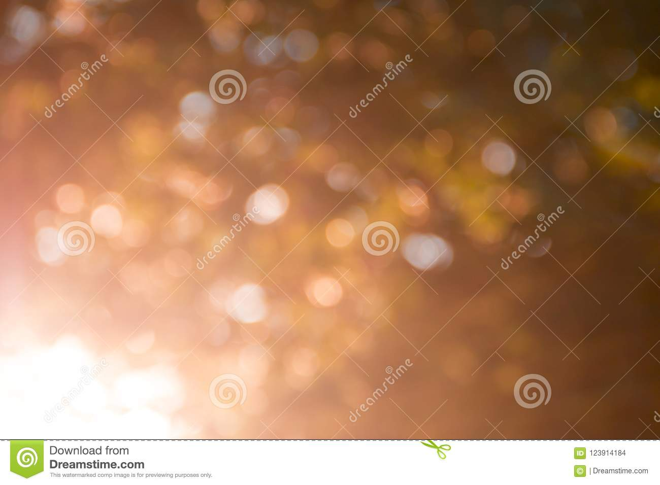 Background Blurred Golden Color Bokeh Autumn Light Rays Sun