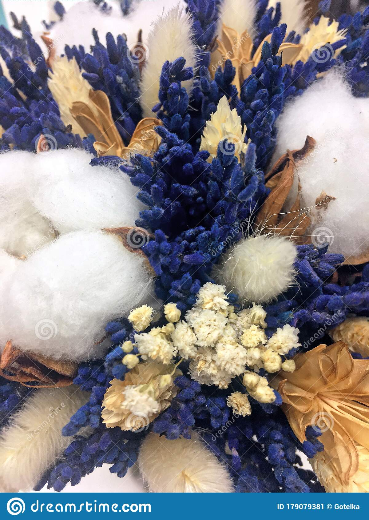 Lavender And Cotton Background Of Cozy Flowers Bouquet Of Dried Flowers Of Cotton Gypsophila Wheat And Lagurus Stock Image Image Of Fabric Fragrance 179079381