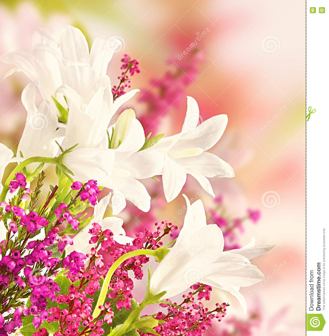 Background for design with flowers beautiful bouquet of flowers background for design with flowers beautiful bouquet of flowers izmirmasajfo
