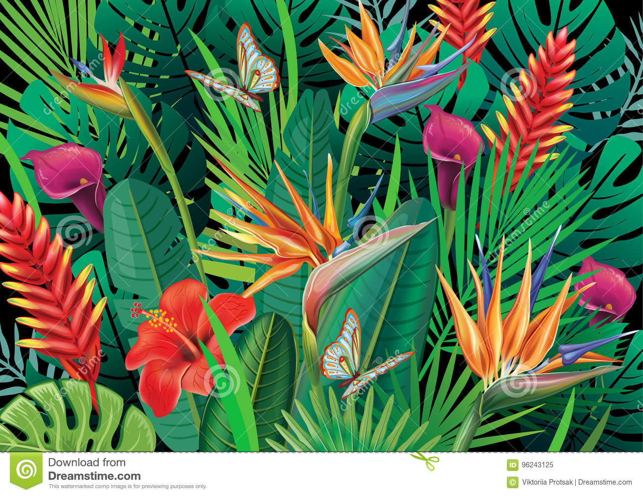 Background With Exotic Tropical Flowers Stock Vector Illustration