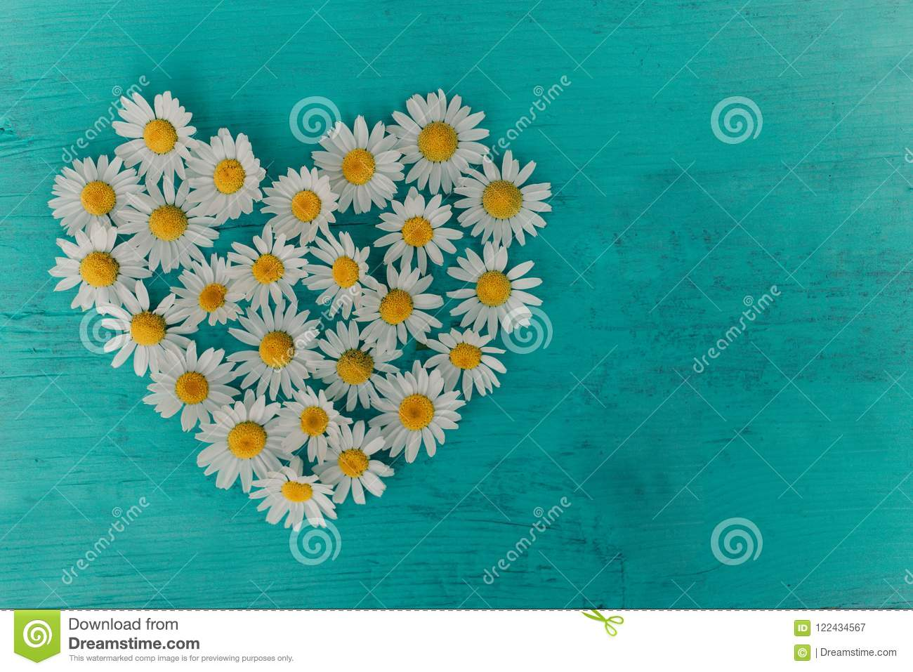 Background flowers, floral pattern, top view, pattern of flowers. Flowers pattern texture, beautiful flowers background