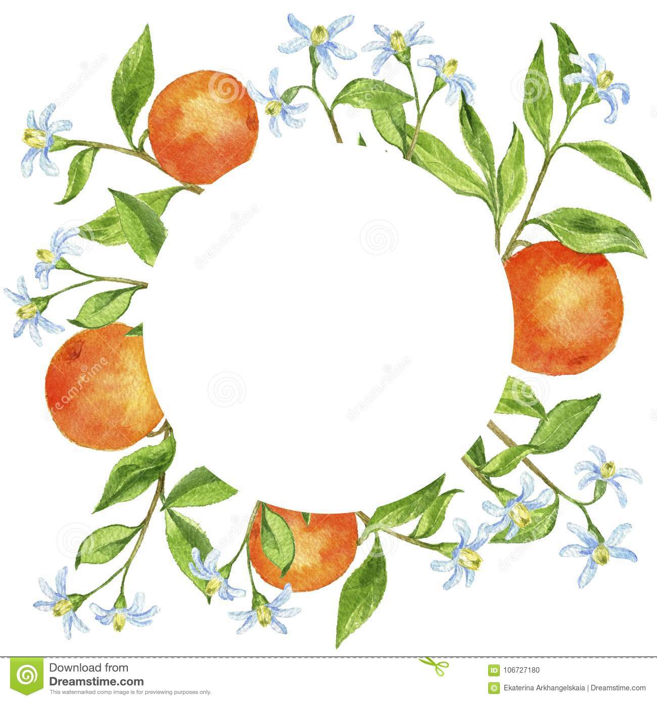 background with fruit tree branches flowers leaves and oranges